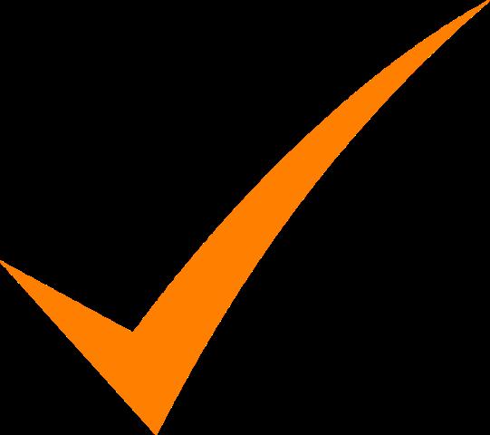 check-mark-orange-hi